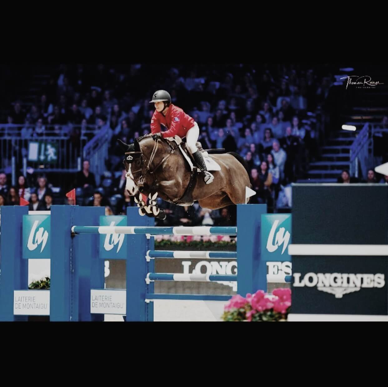 Reed Kessler: cavalière // show jumping competitor image